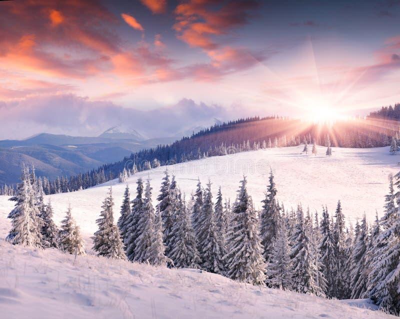 Lever de soleil coloré d'hiver en montagnes photographie stock libre de droits
