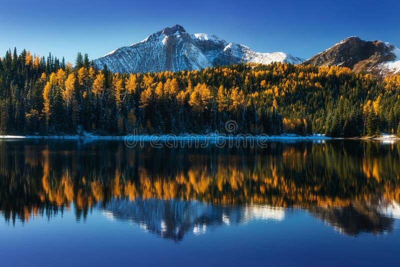 Lever de soleil de début de la matinée au beaux lac et montagne de rallonge coudée Autumn Lake est un petit lac dans Alberta occi images stock