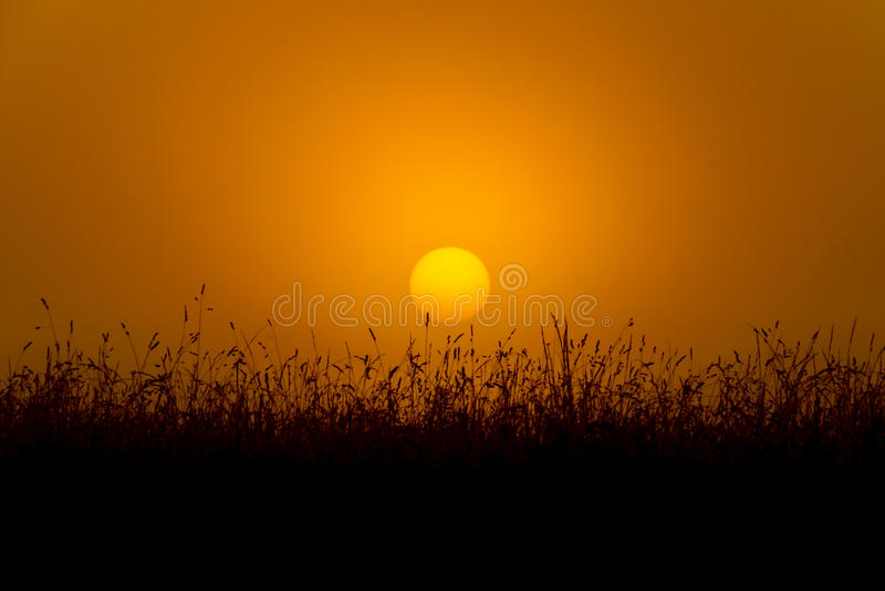 Lever de soleil d'or images stock