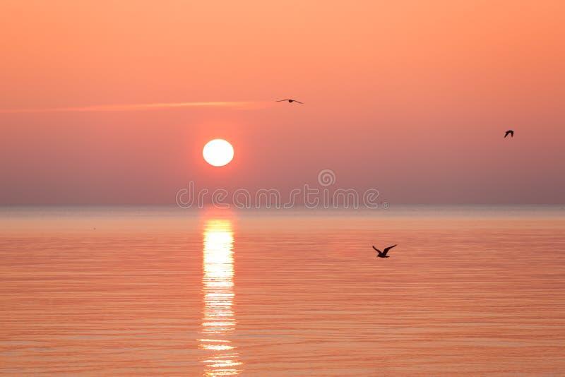 Lever de soleil d'or au-dessus de la mer images stock