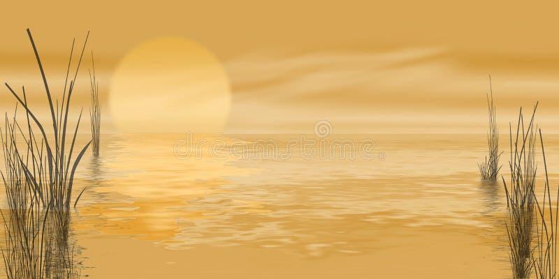 Lever de soleil d'or de marais illustration stock