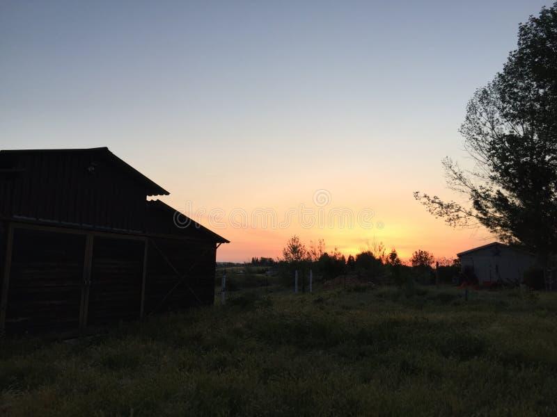 Lever de soleil d'hiver de Paso Robles avec la silhouette des arbres et de la grange images libres de droits