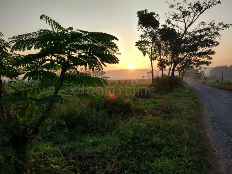Lever de soleil dans le domaine photo libre de droits