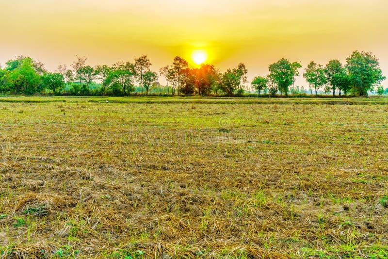 Lever de soleil dans moring sur le champ de l'agriculteur images stock