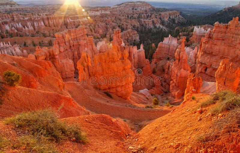 Lever de soleil de canyon de Bryce image libre de droits