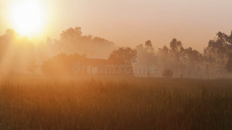 Download Lever de soleil de champs photo stock. Image du brouillard - 45367612