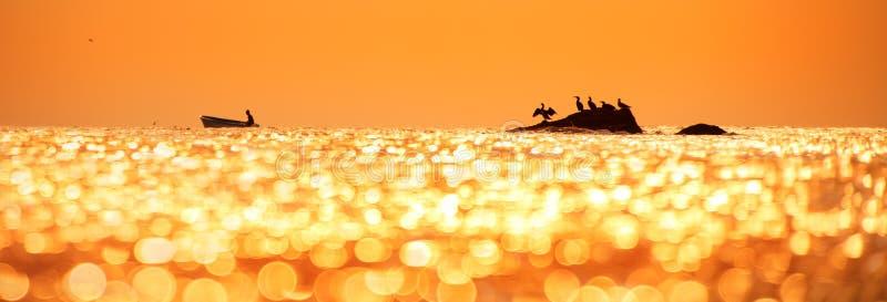 Lever de soleil de début de la matinée au-dessus de la mer et oiseaux photographie stock