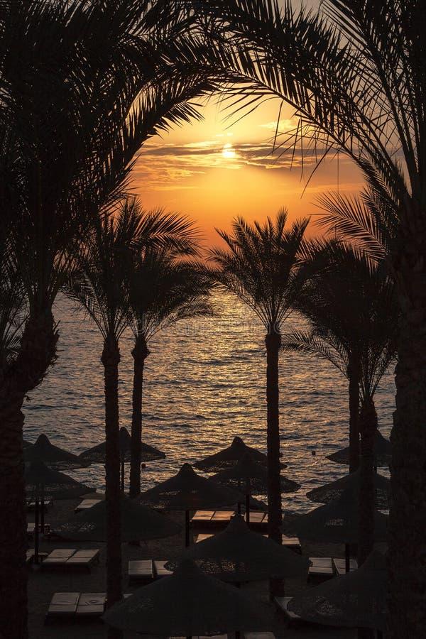 Lever de soleil de l'Egypte photo stock