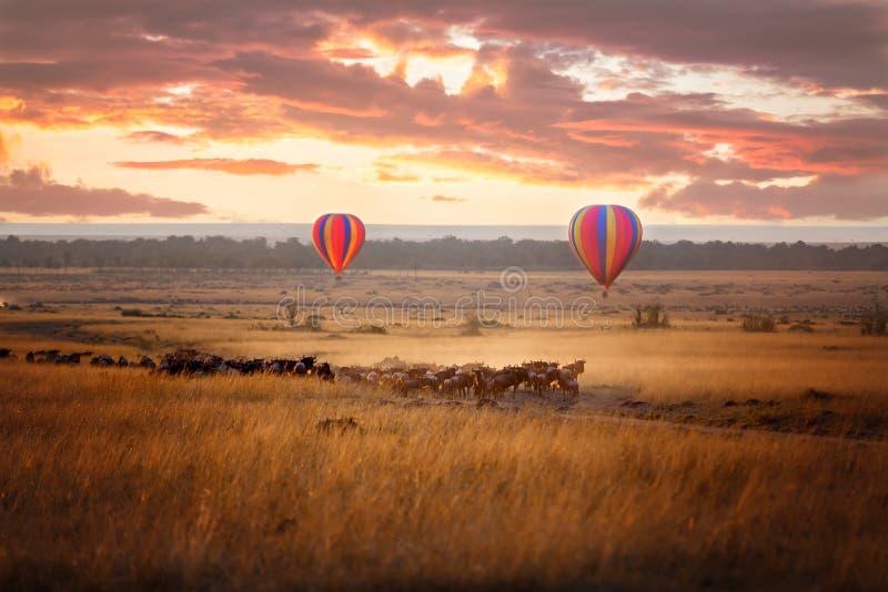 Lever de soleil de Mara de masai avec le gnou et les ballons images stock