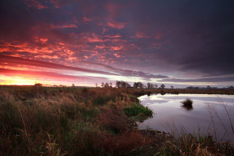 Lever de soleil dramatique au-dessus de marais images stock