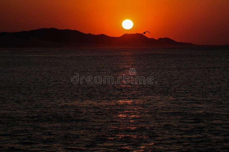 Lever de soleil du pilier dans le port Alfred photos stock