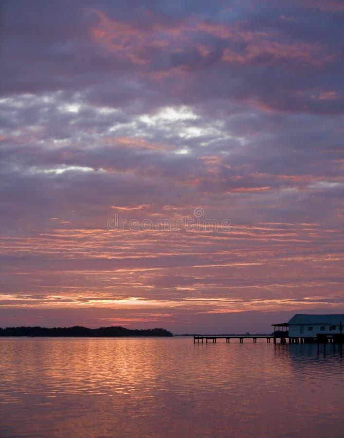 Lever de soleil en côte la Floride de chêne photographie stock