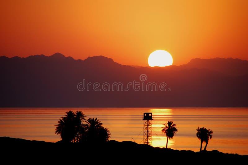 Lever de soleil en Egypte avec des paumes photo stock