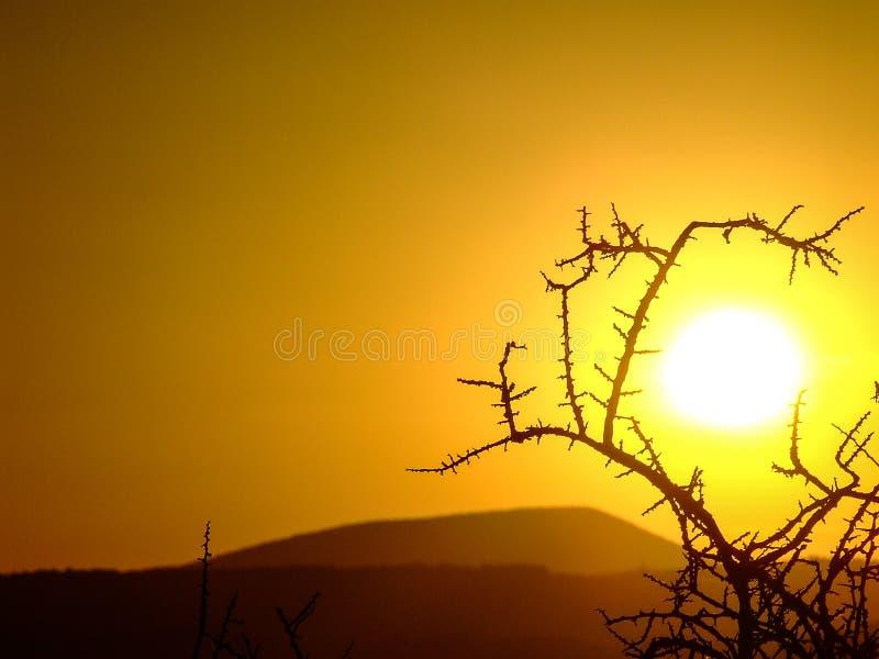 Lever de soleil en nature images libres de droits