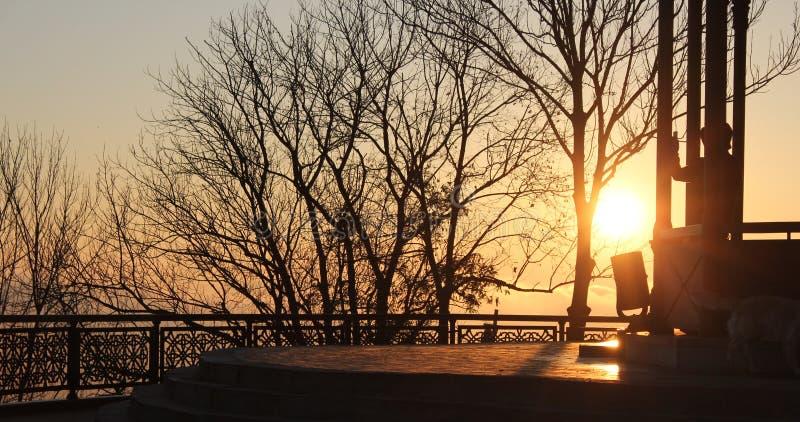 Lever de soleil en parc images libres de droits