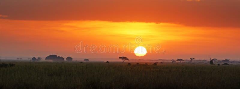 Lever de soleil en parc national d'Amboseli photographie stock libre de droits
