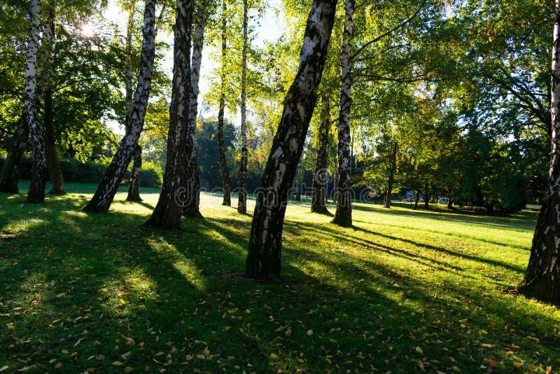 Lever de soleil en parc de ville pendant l'automne tôt, Zagreb en Croatie images libres de droits