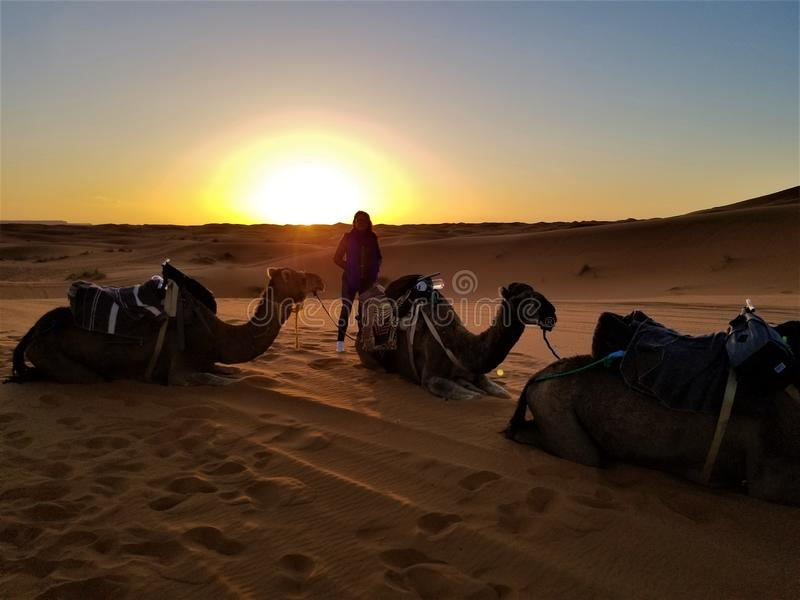 Lever de soleil en Sahara Morocco ! photos stock