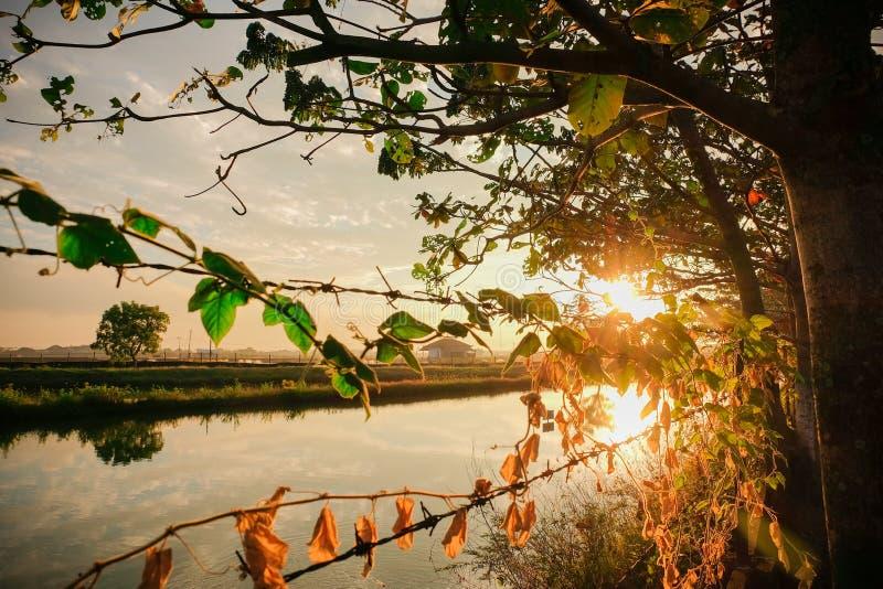 Lever de soleil de l'Indonésie photographie stock