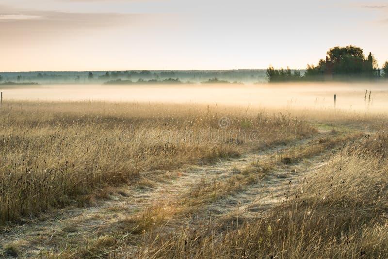 Lever de soleil le matin brumeux photos stock