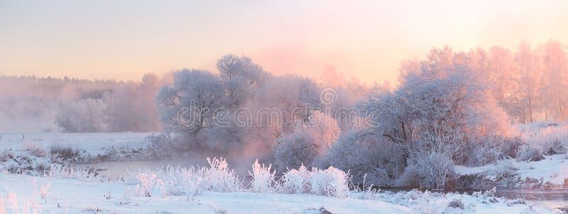 Lever de soleil lumineux d'hiver Arbres givrés blancs dans le matin de Noël images stock