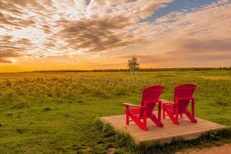 Lever de soleil majestueux au-dessus du parc images libres de droits