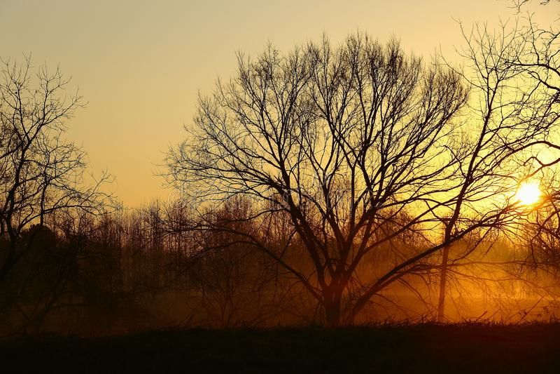 Lever de soleil de matin de pays photos libres de droits