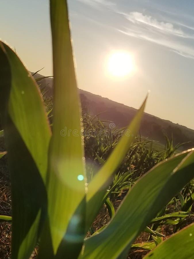 Lever de soleil de pays photos stock