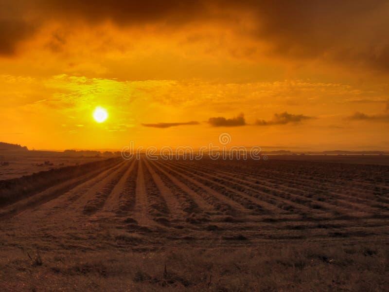 Lever De Soleil Rural Photo libre de droits