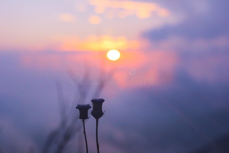 Lever de soleil sur le dessus de la montagne dans Chaingmai, Thaïlande images libres de droits