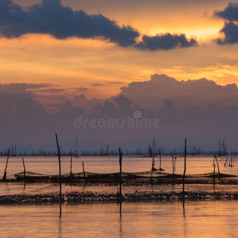 Lever de soleil sur le lac photos libres de droits