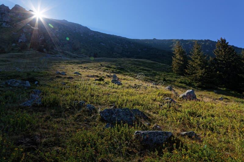 Lever de soleil sur les pentes de montagne photo libre de droits