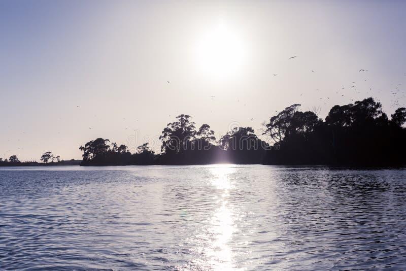 Lever de soleil sur Leven River dans Ulverstone Tasmanie photographie stock