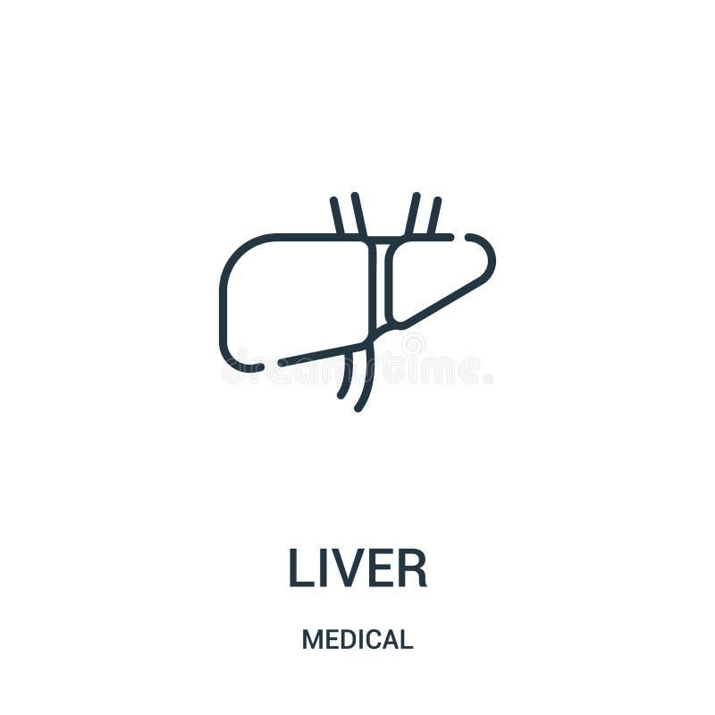 leversymbolsvektor från medicinsk samling Tunn linje illustration för vektor för leveröversiktssymbol royaltyfri illustrationer