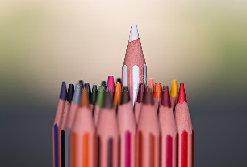 Levi in piedi fuori dalla folla Il colore disegna a matita la macro fotografie stock
