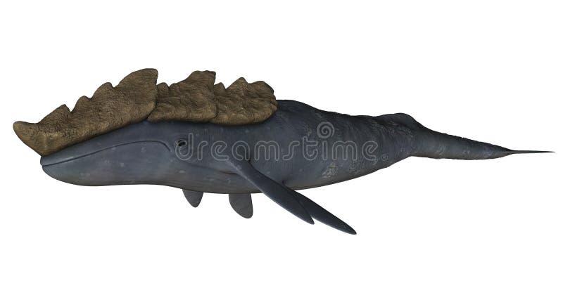 Leviathan illustration de vecteur