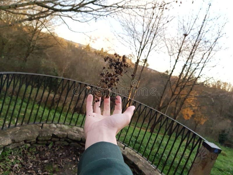 levitation imagens de stock royalty free