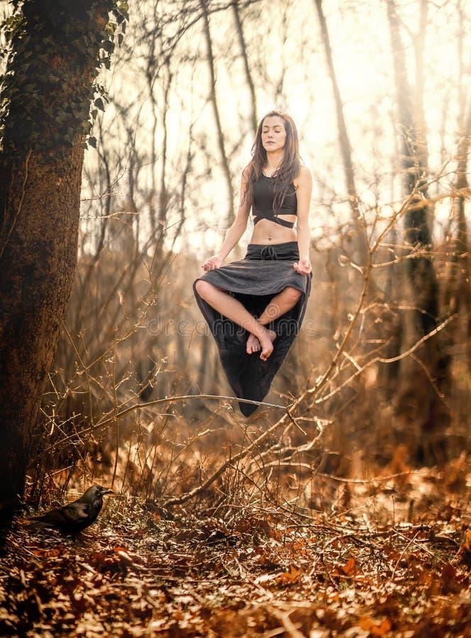 levitation Mulher que flutua em nada, dentro de uma floresta místico foto de stock royalty free