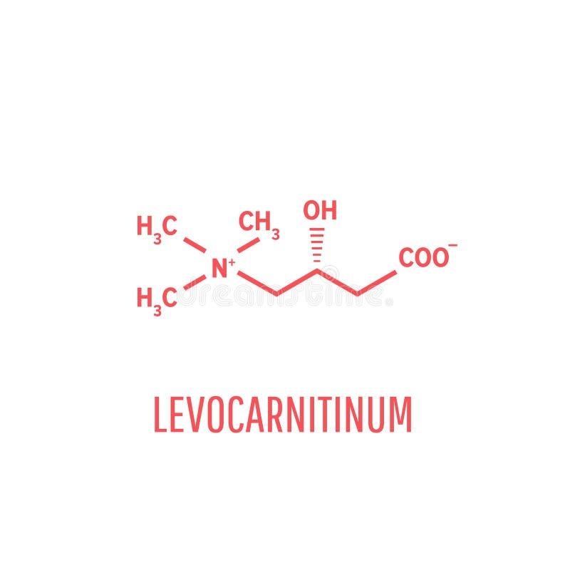 Levocarnitine生物分子 O-乙酰肉碱生物分子 向量例证