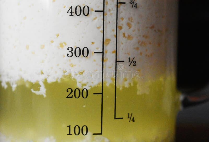 Levure Probiotic, pour l'immunité images stock