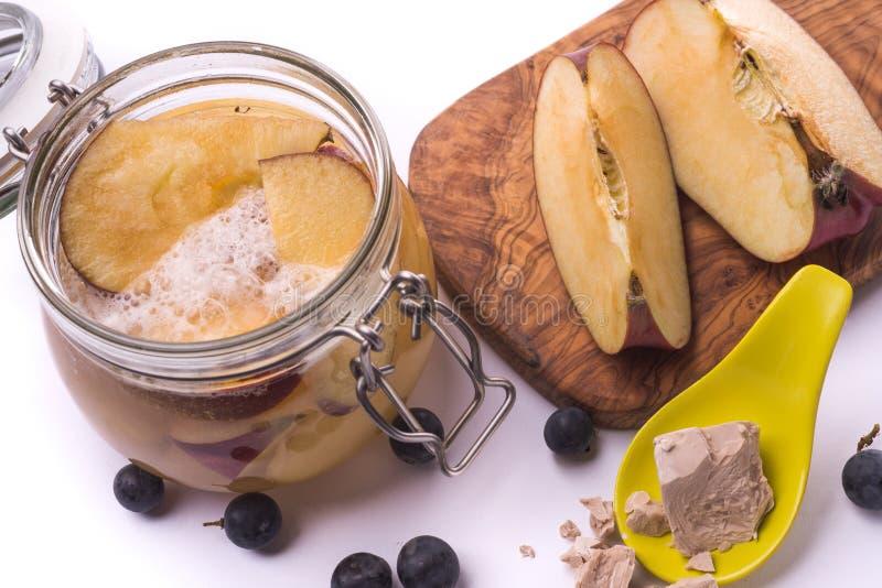 Levure sauvage de fermentation de fruit photographie stock