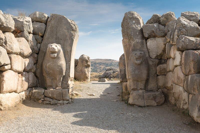 Lew brama w zachodzie antyczny hittite kapitał zdjęcia royalty free