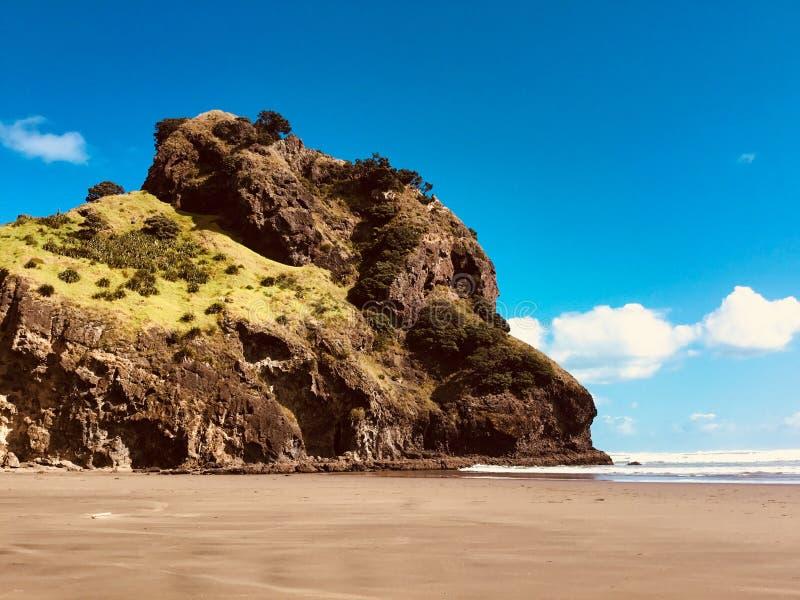 Lew głowy skała Nowa Zelandia obraz royalty free
