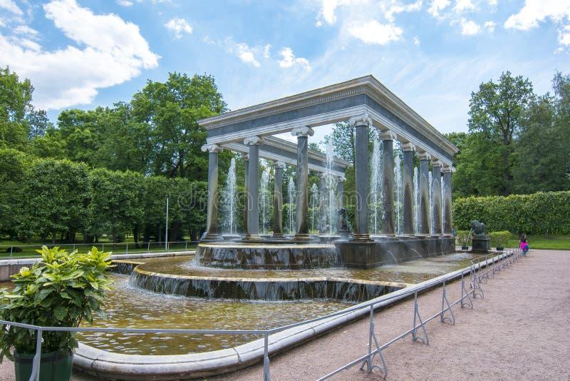 Lew kaskadowa fontanna w Niskim parku Peterhof, święty Petersburg, Rosja fotografia stock