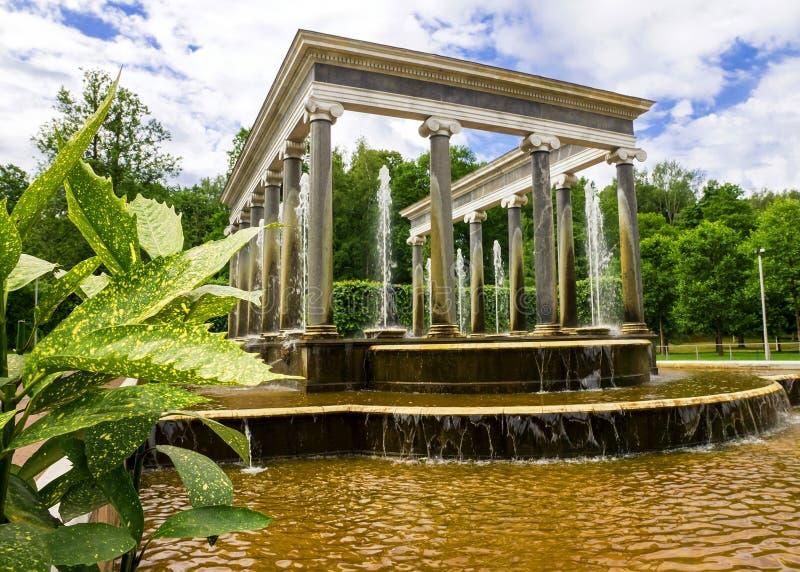 Lew kaskadowa fontanna w Peterhof, Rosja zdjęcia royalty free