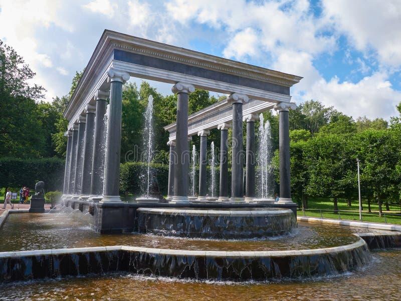 Lew Kaskadowa fontanna w Peterhof, StPetersburg, Rosja zdjęcia stock