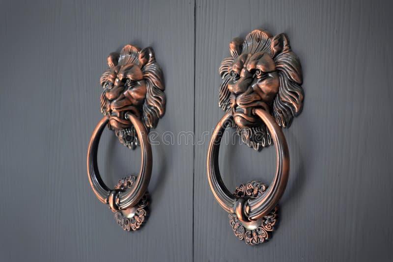 Lew rękojeści drzwi obrazy stock