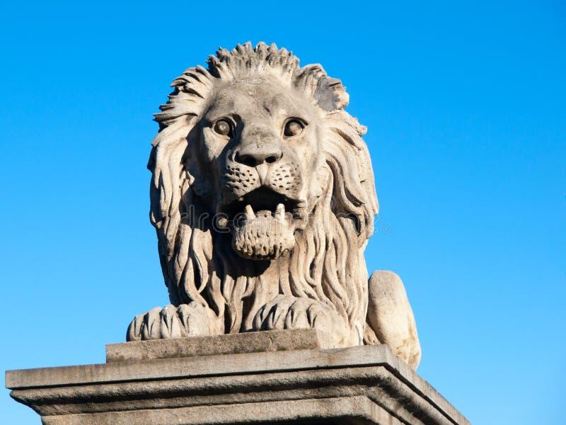 Lew rzeźba na Łańcuszkowym moscie w Budapest, stolica Węgry fotografia stock