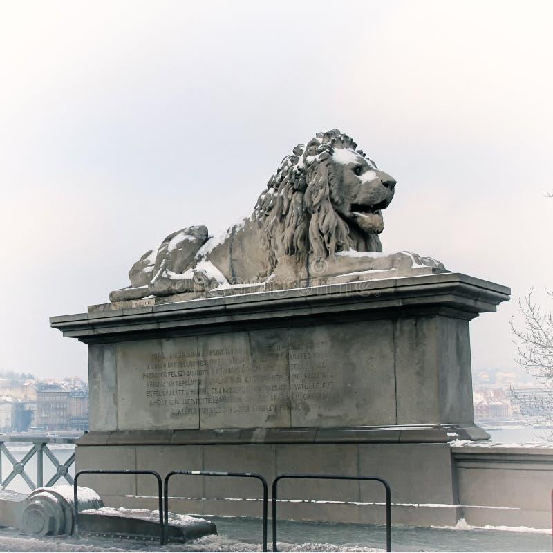 Lew rzeźby Łańcuszkowy most z widokiem Budapest, H zdjęcie stock