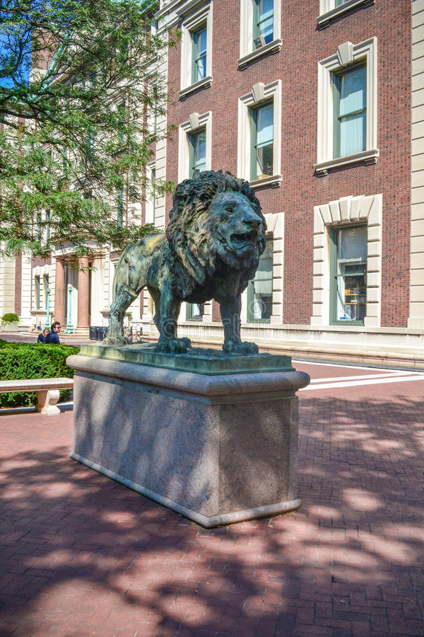 Lew statuy uniwersytet columbia Nowy Jork obraz stock